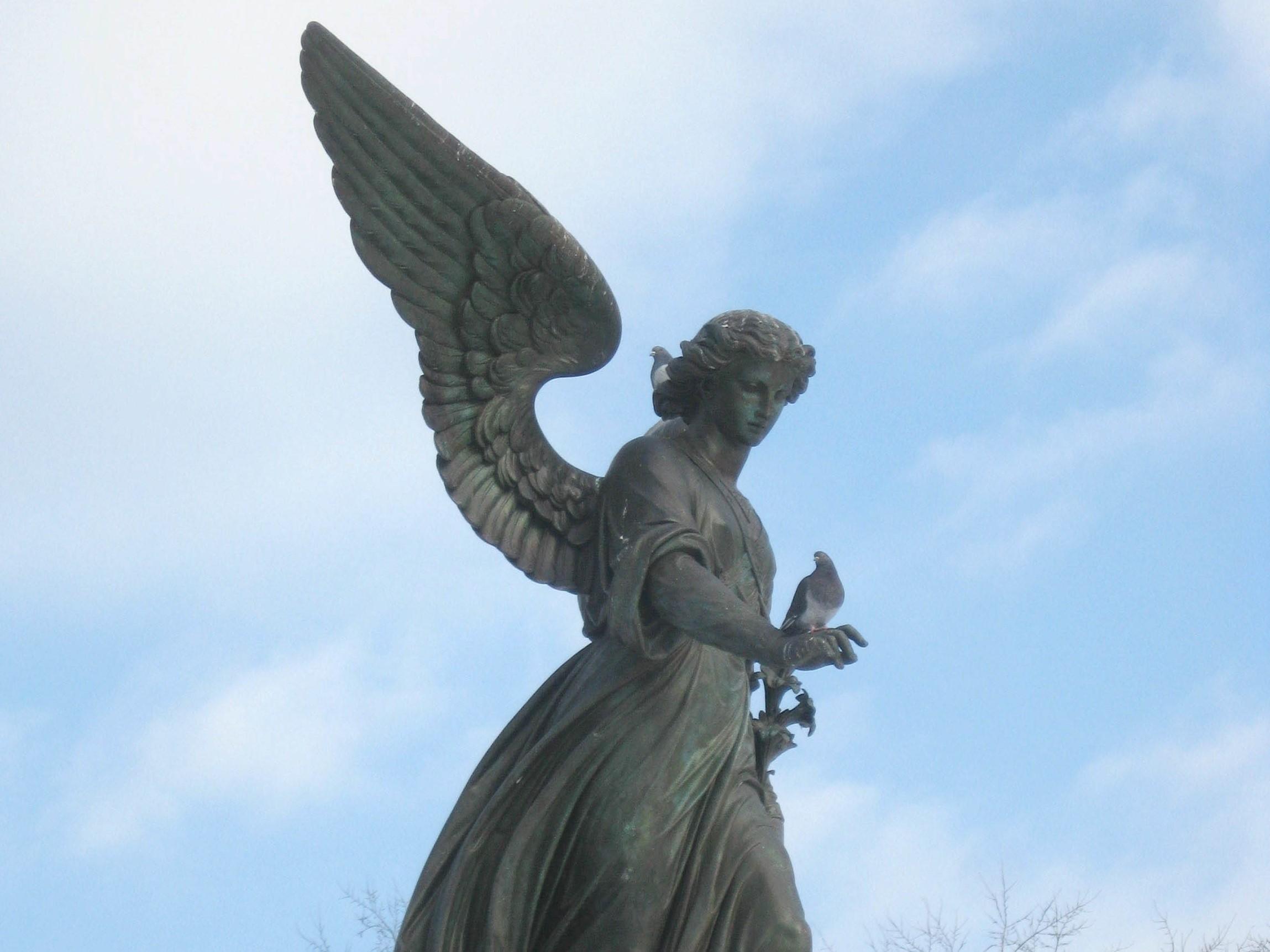 The fallen angel seeking rebellious and unforgivable play 8