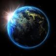 Global Insights