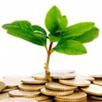 Investment Moto