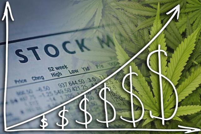 Marijuana stocks ipo news articles fortune