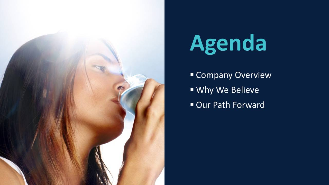 Company Overview Why We Believe Our Path Forward