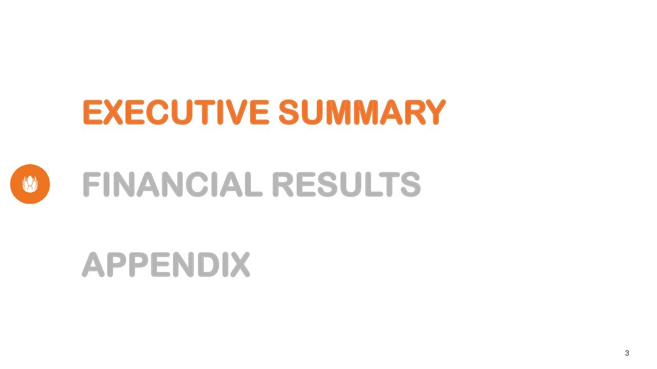 FINANCIAL RESUL TS APPENDIX