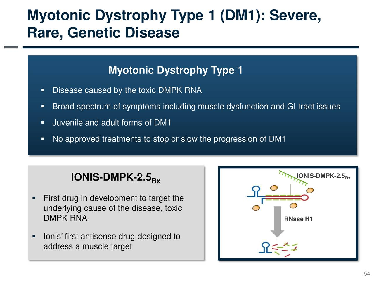 myotonic dystrophy research paper Featured articles the following featured articles include those from nichd researchers or nichd-supported researchers:.
