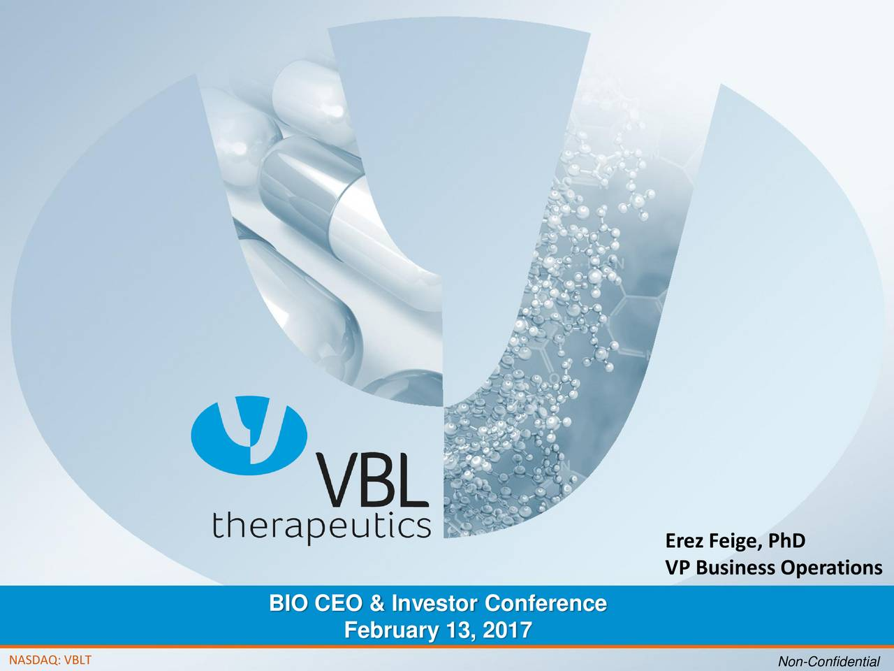 VP Business Operations BIO CEO & Investor Conference February 13, 2017