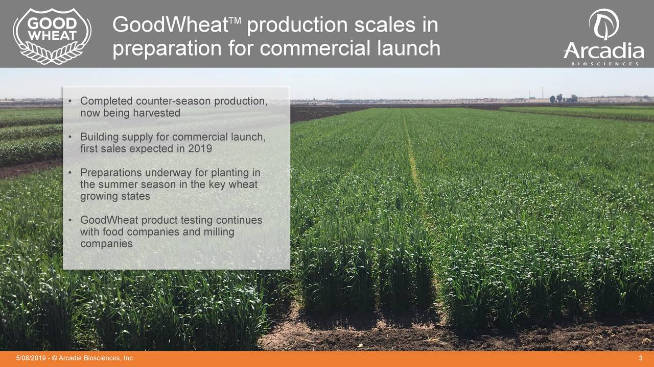 GoodWheat production scales in preparation for commercial launch • Completed counter-season production, now being harvested • Building supply for commercial launch, first sales expected in 2019 • Preparations underway for planting in the summer season in the key wheat growing states • GoodWheat product testing continues with food companies and milling companies 5/08/2019 - © Arcadia Biosciences, Inc. 3